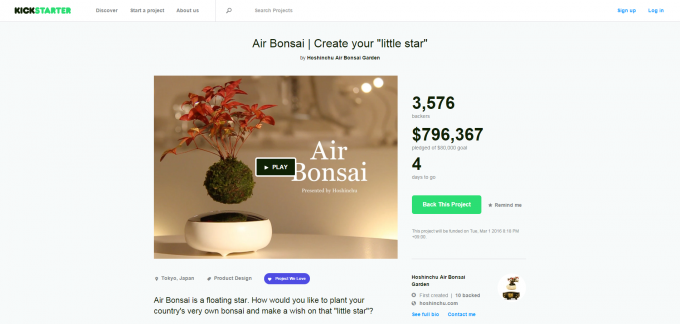 Air Bonsai   Create your  little star  by Hoshinchu Air Bonsai Garden — Kickstarter