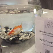 「寂しいお客様限定」ベルギーのホテルでユニークなサービス!