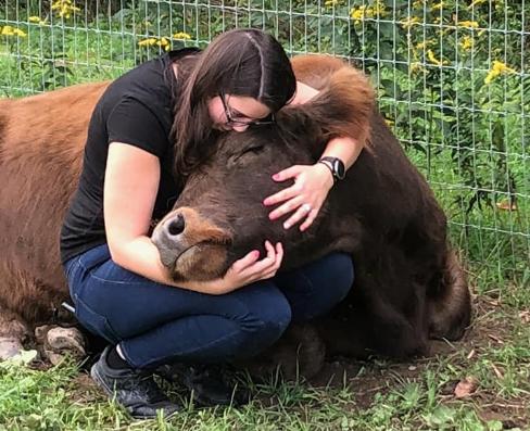 牛をハグして癒しを得る「カウカドリング(cow cuddling)」がアメリカでじわじわと人気