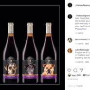 【アメリカ】ワイン会社が犬のラベルをボトルに貼って保護犬探しを支援