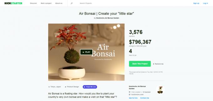 Air Bonsai   Create your  little star  by Hoshinchu Air Bonsai Garden — Kickstarter