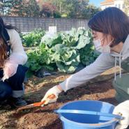 社内プロジェクト「SUNNY FARM」で本格的な農作業がスタート!初めての経験にメンバー大奮闘